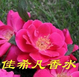 杭州佳希凡香水有限公司
