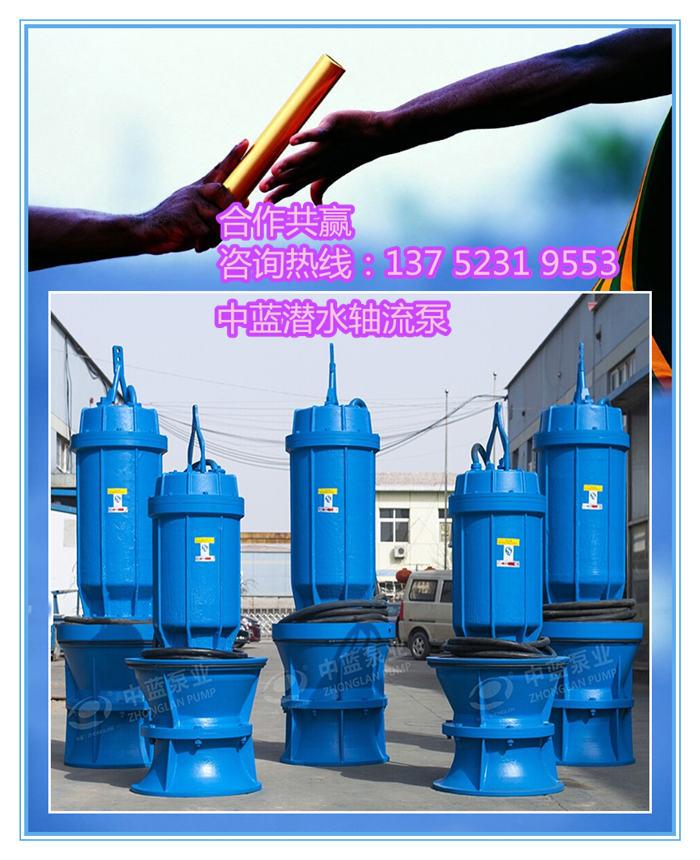 潛水軸流泵生產廠家 選型 價格表