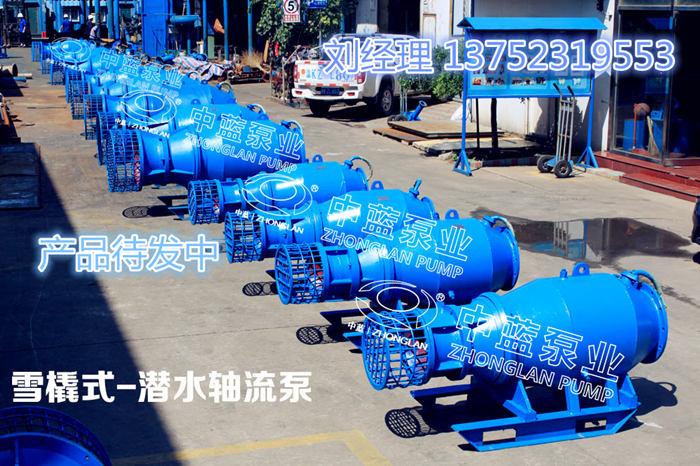 雨季防汛排水抗旱泵 大流量低揚程潛水軸流泵
