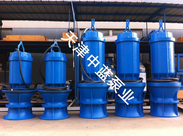 潛水軸流泵制造廠家
