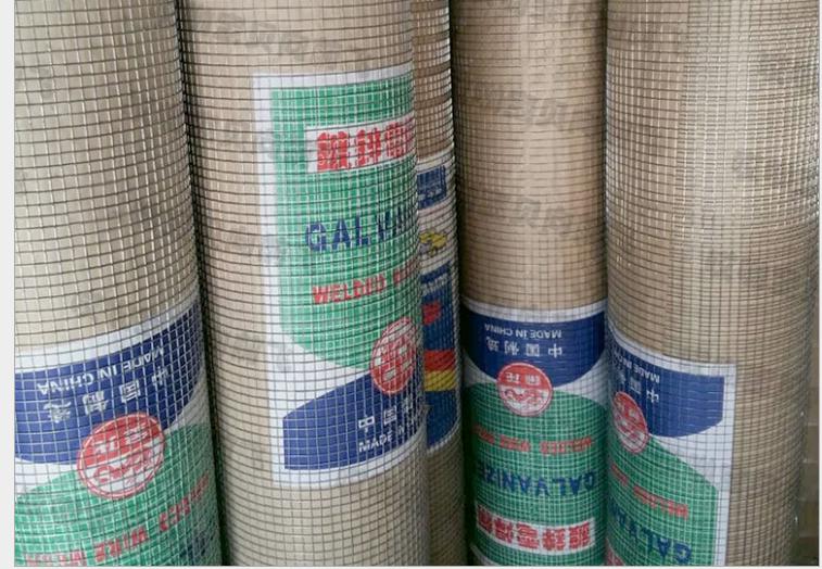 廠家***焊鋼絲網 不銹鋼電焊鋼絲網 圈地專用電焊鋼絲網