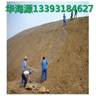山坡植被绿化施工 、镀锌勾花网,武汉地区***施工喷浆挂网