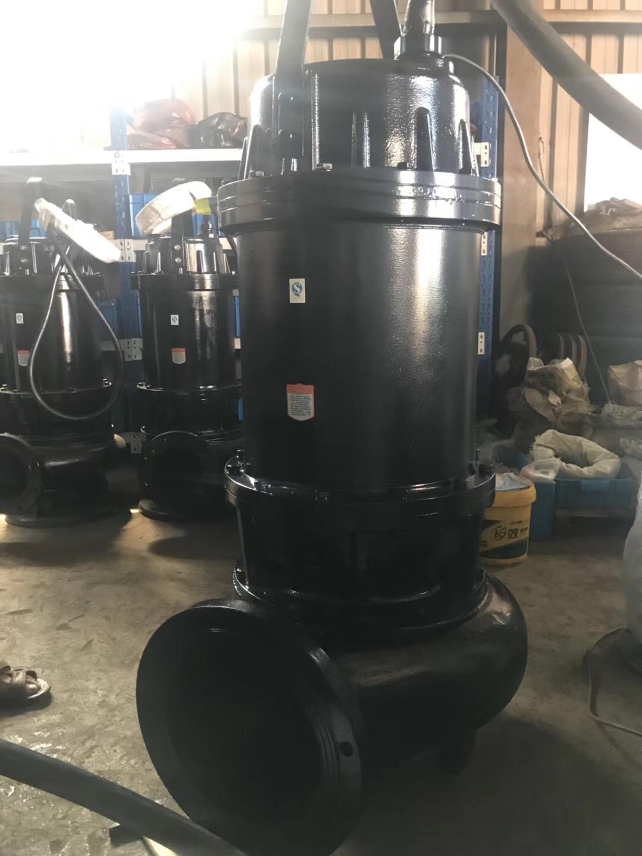 臥式潛水軸流泵