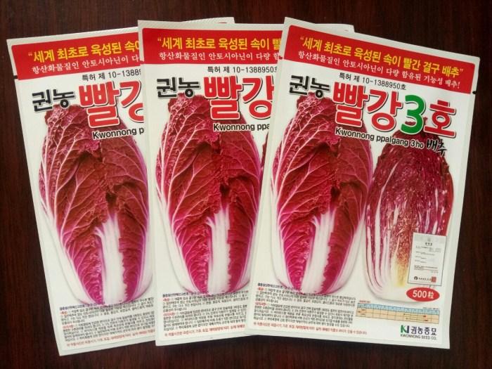 韓國紫白菜種子