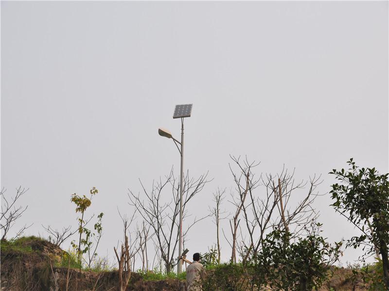 天元太阳能路灯***格-太阳能路灯厂家电话