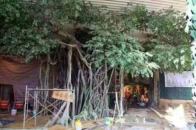 無極縣假樹廠家酒店假樹承包 無極縣水泥假樹施工安裝