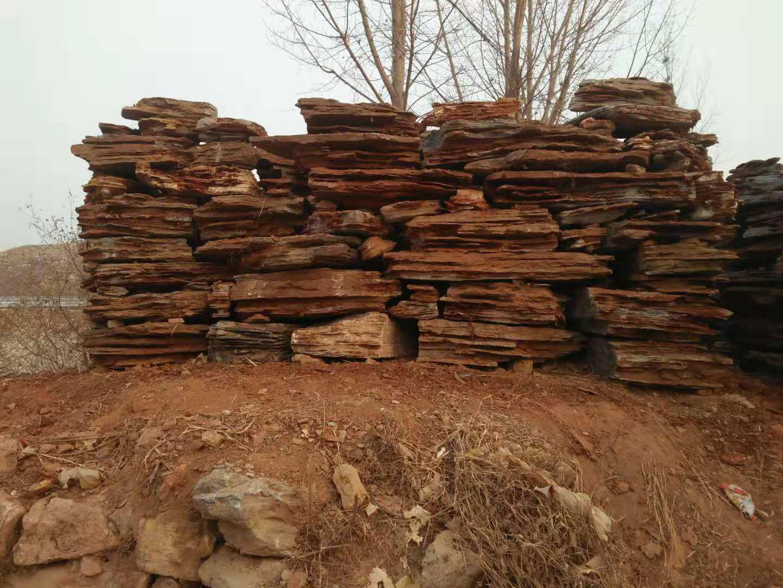 槐蔭假樹廠家假樹安裝 槐蔭水泥假樹批發設計