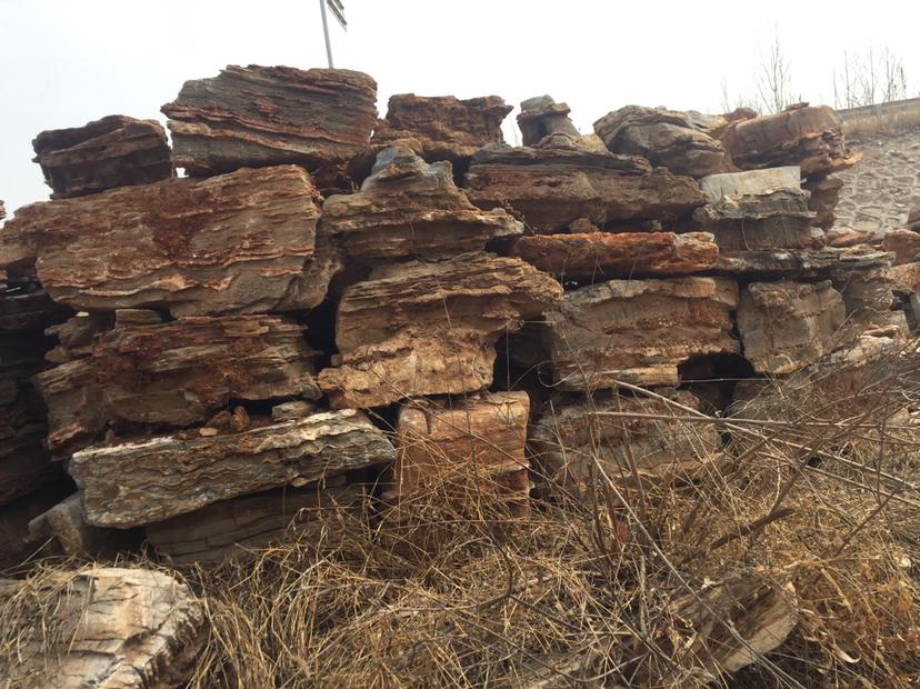 茄子河假樹廠家水泥桃花樹施工 茄子河水泥假樹批發設計