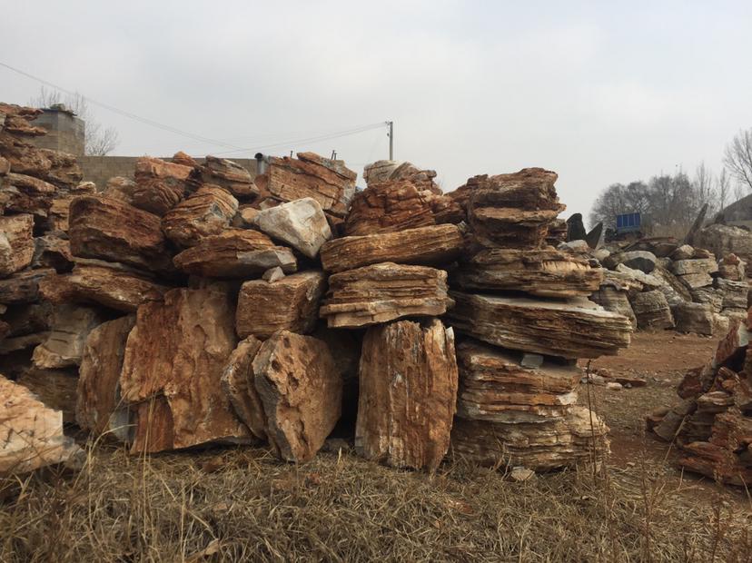 北安市假樹廠家酒店假樹施工 北安市水泥假樹可安裝施工
