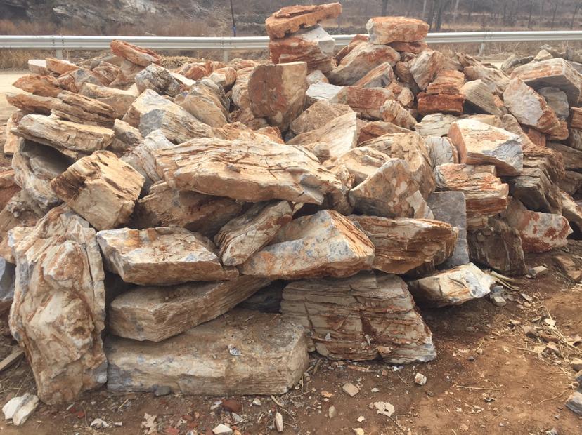 顺平县假树厂家室内假树施工 顺平县水泥假树价格优惠