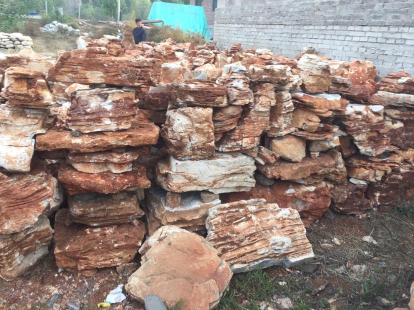 龙山假树厂家仿真树门口设计 龙山水泥假树产地供应