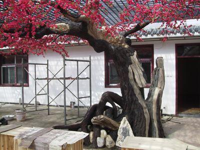 景县假山工程_鱼池假山工程_景县千层石假山公司