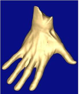 足部手部扫描  测力台