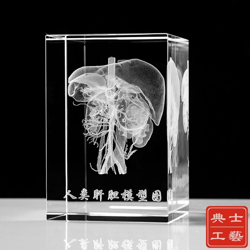 基因模型紀念品設計定做,水晶內雕模型禮品/立體模型擺件廠家